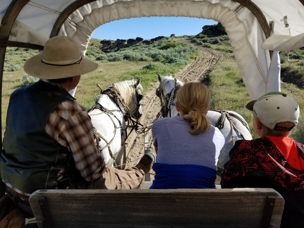 Kids driving horses on Oregon Trail, Covered wagon ride on Oregon Trail, Historic Trails West Casper Wyoming
